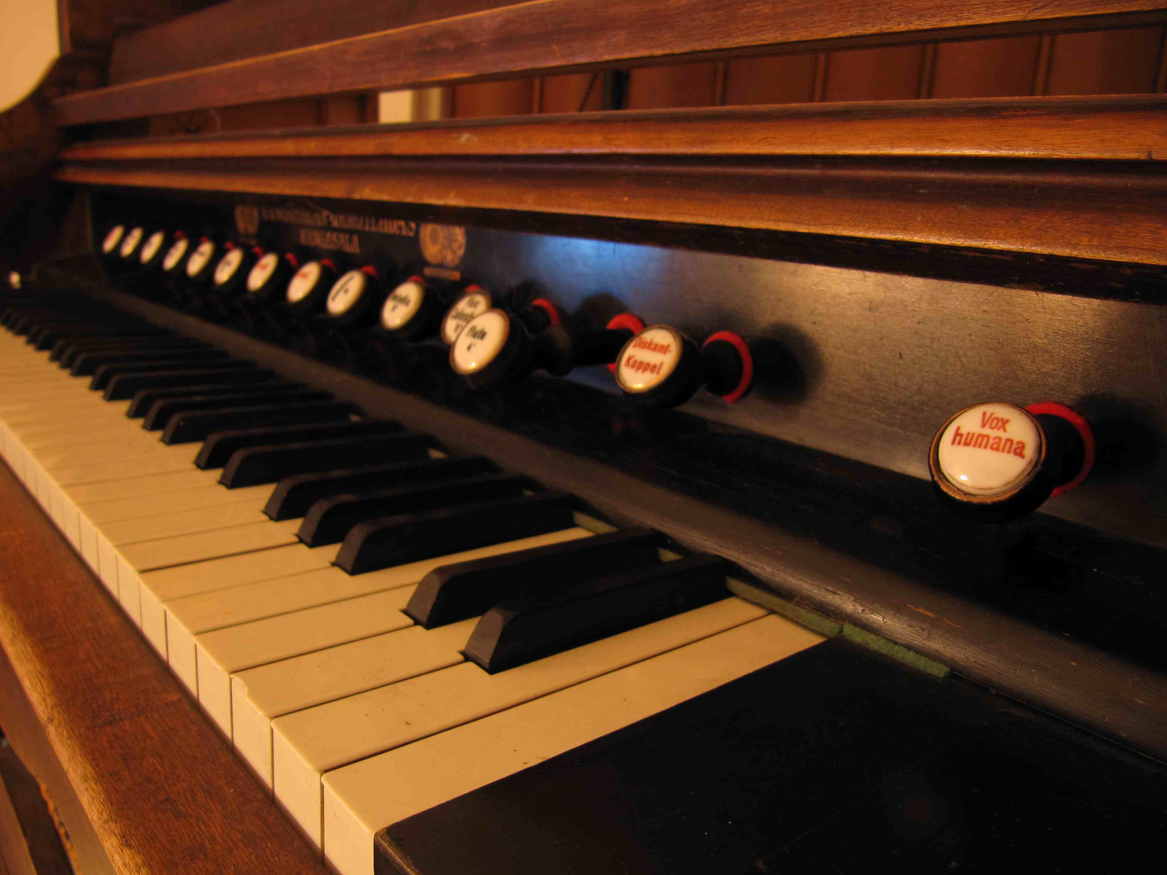 Reed organ study